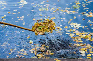 Pond Cleaning Godalming (01483)