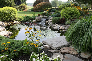 Pond Installer Ellesmere Port Cheshire (CH65)