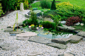 Pond Installers Swadlincote UK (01283)