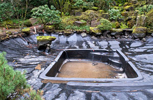 Pond Repair Bridlington (YO15)