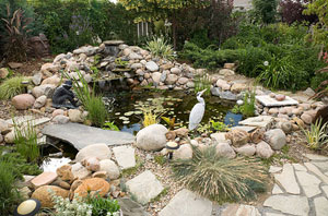 Pond Installers Airdrie UK (01236)